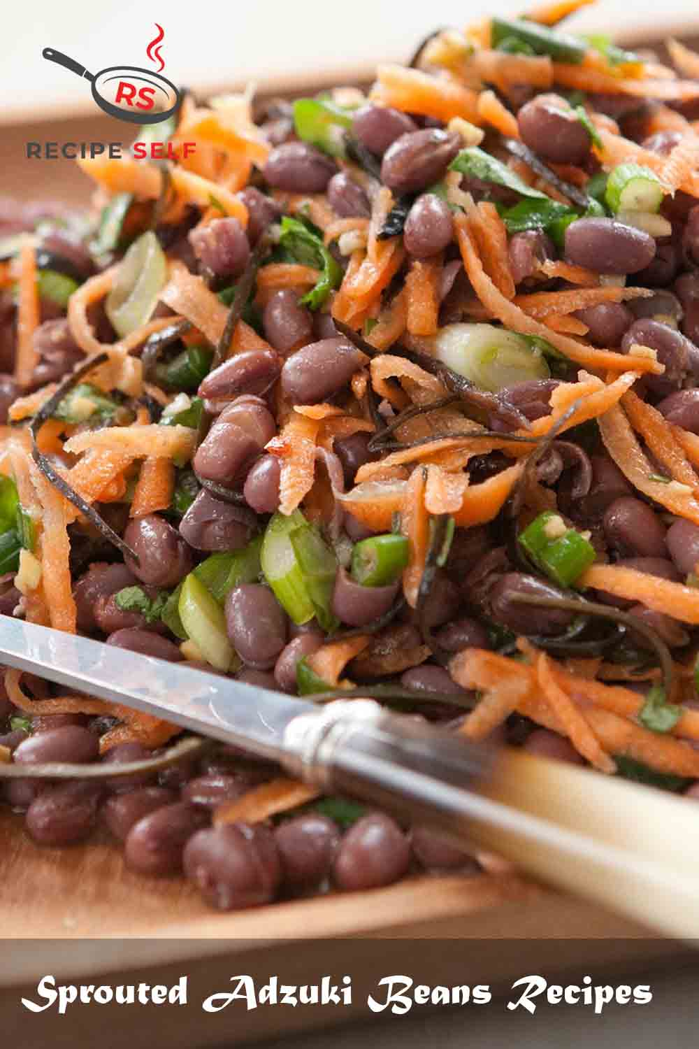 Sprouted Adzuki Beans Recipes